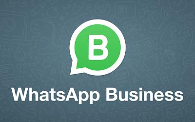 Curs online de Whatsapp Business